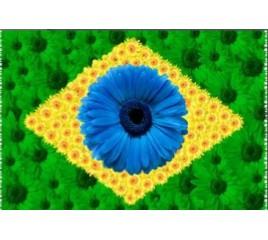 Bandeira do Brasil Floral